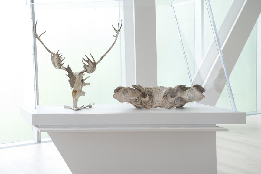 L'art inuit de la collection Brousseau possède maintenant sa salle d'exposition. 22 juin 2016. Crédit photo : Jean-François Gravel.
